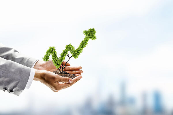 tips sukses bisnis minimarket